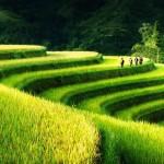 Photographie pendant le voyage au Vietnam