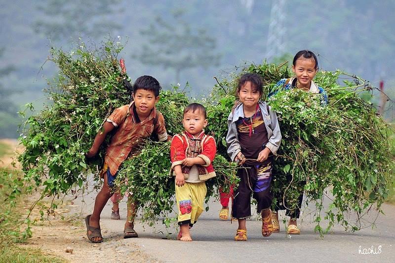 Nos voyages hors des sentiers battus au Vietnam en video