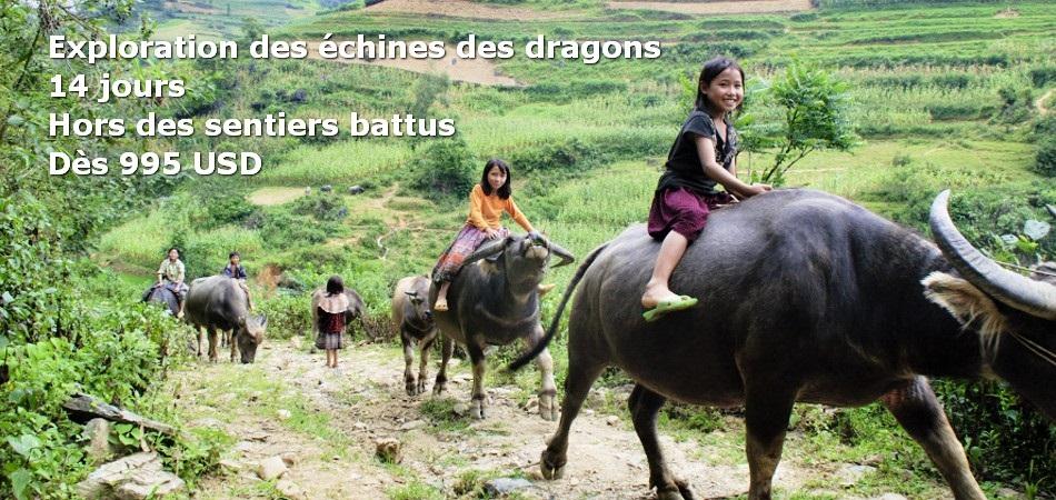 Parfait itinéraire de deux semaines ( entre 10 et 15 jours ) dans le nord du Vietnam