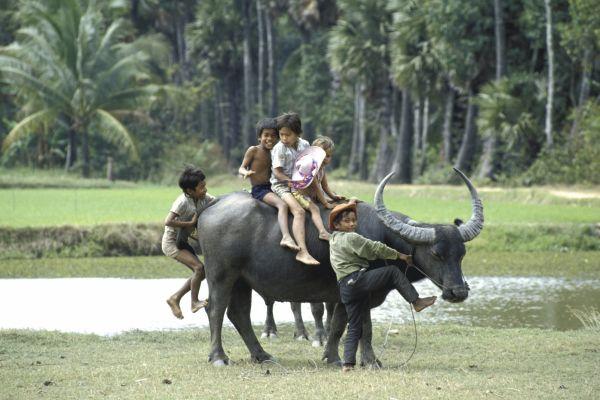 Voyages d'Aventure au Nord Vietnam avec AGENDA TOUR