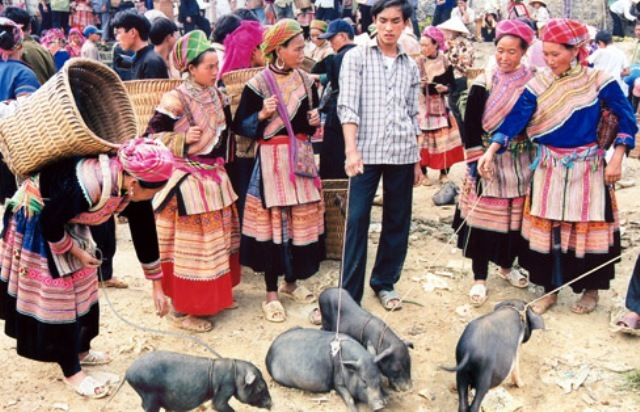 depenses voyage au Vietnam