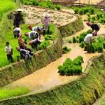 Voyage en moto au Nord Vietnam sur la piste  Ha Giang – Bac Ha, Nord Vietnam