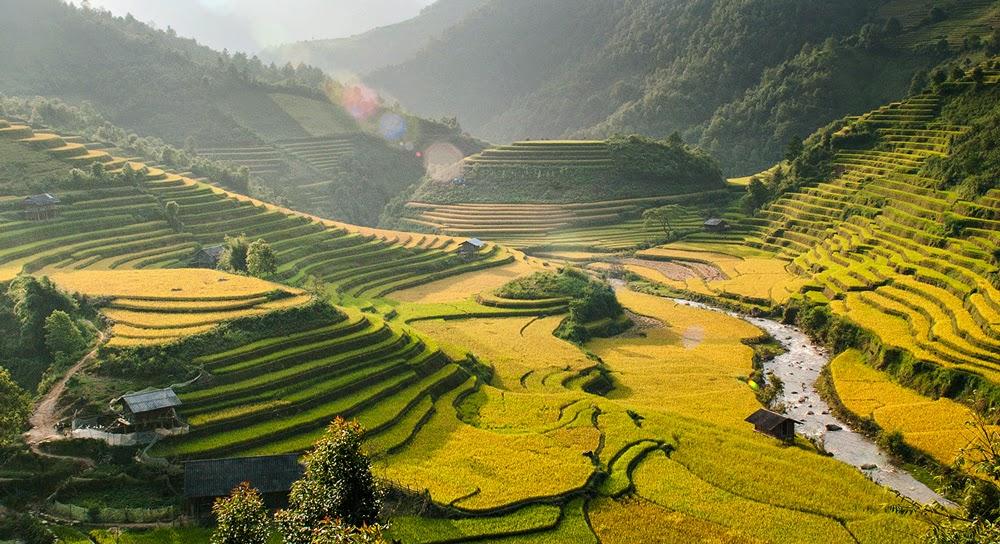 Que faire, Mu Cang Chai, Tu Le , Nord Vietnam