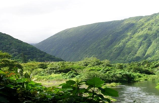 Parc National Bach Ma, excursion d'un jour au départ de Hue ou Danang