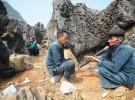 Circuit insolite au Nord Vietnam Sercrets de Haut Tonkin en 18 jours, trekking, culture dès 1065 USD