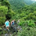 Circuit Découverte des Alpes Tonkinoises aux patrimoines du Centre du Vietnam en 13 jours dès 1026 usd