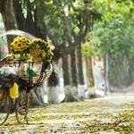 Automne Hanoi