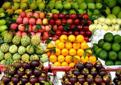 Infographie : Fruits tropicaux exotiques au Vietnam