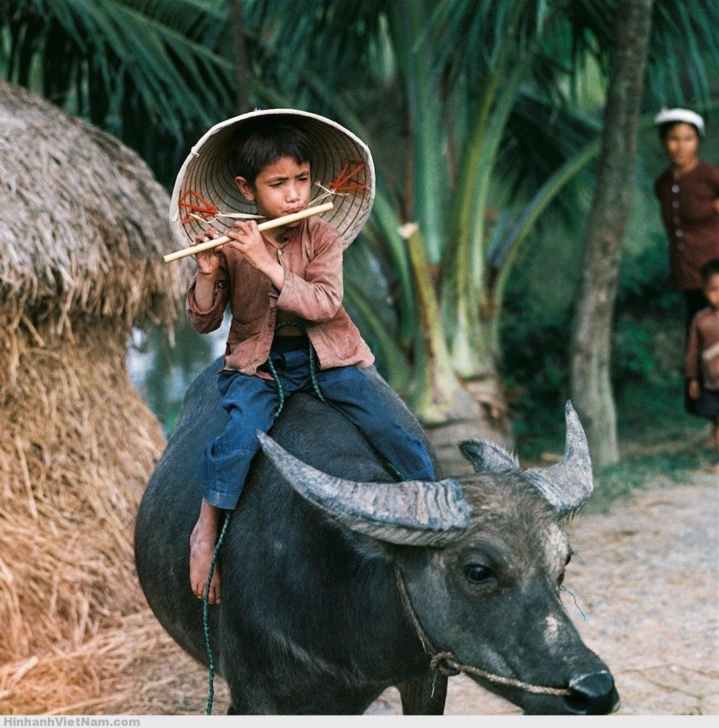 Circuit Visite du nord Vietnam en 25 jours dès 748 usd – Location de voiture avec chauffeur