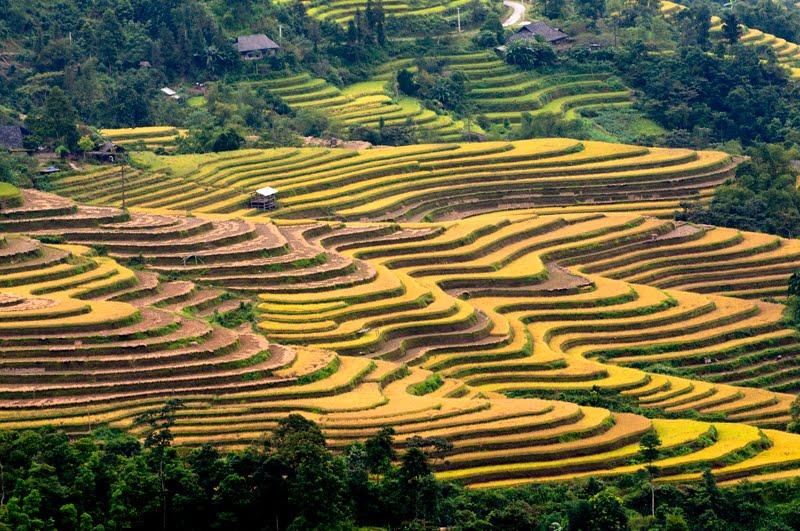 Vietnam parmi Top 10 destinations à visiter en automne 2015