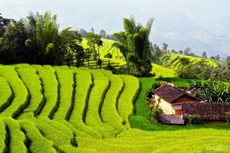 Voyage Photo au Vietnam avec Minh Anh Voyage