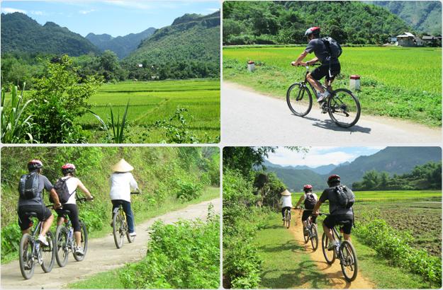 Voyage au Vietnam en Août : Météo, bons plans, que faire, fetes