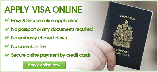 Visa d'affaire ( Visa de travail ) pour le Vietnam