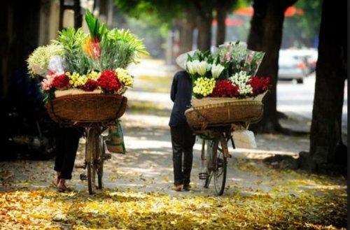 Itinéraire pour une semaine dans le nord du Vietnam