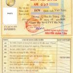 permis de conduire vietnamien