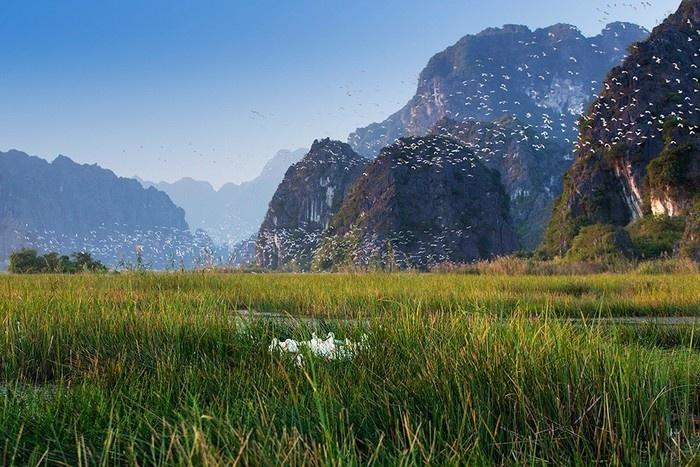 Réserve naturelle Van Long, Ninh Binh