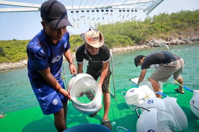 Marcher sous la mer à Nha Trang et Cu Lao Cham Hoi An 1