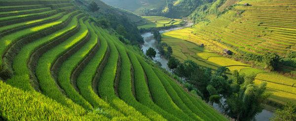 Bus Ha Giang – Lao Cai – Sa Pa / Sa Pa – Lao Cai –  Ha Giang