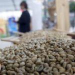 Le Vietnam au top des pays exportateurs de café du monde en mars