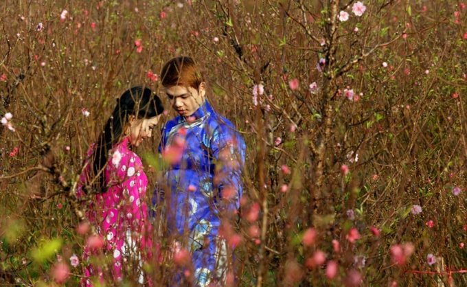 Un couple vietnamien pose pour des photos parmi les fleurs de fleurs de pêche à Hanoi.
