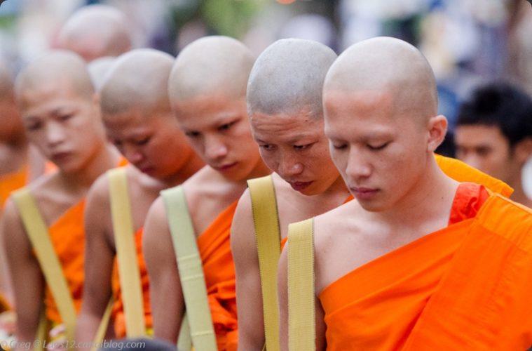 Tak Bat, Cérémonie de l'aumône du matin des moines à Luang Prabang, au Laos