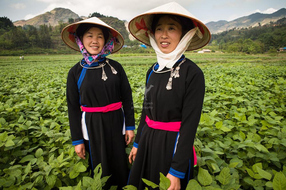 Femmes de Tay en costume local