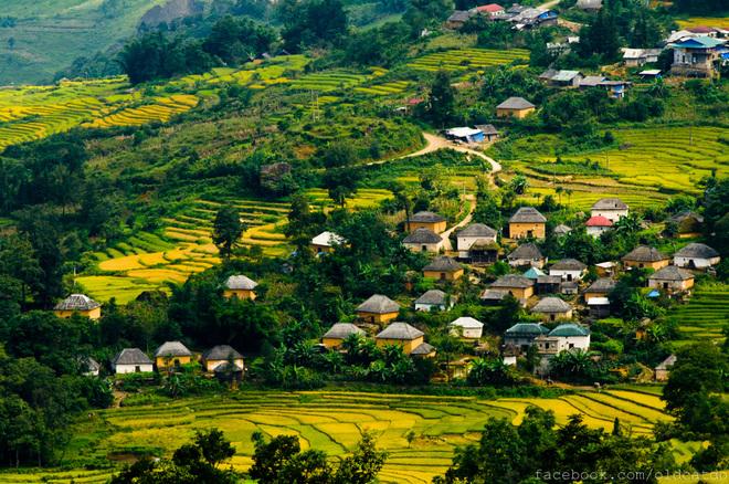 Village de Ha Nhi
