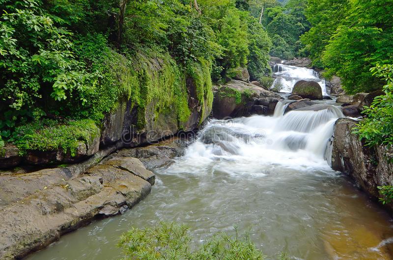 Exploration du parc national de Khao Yai