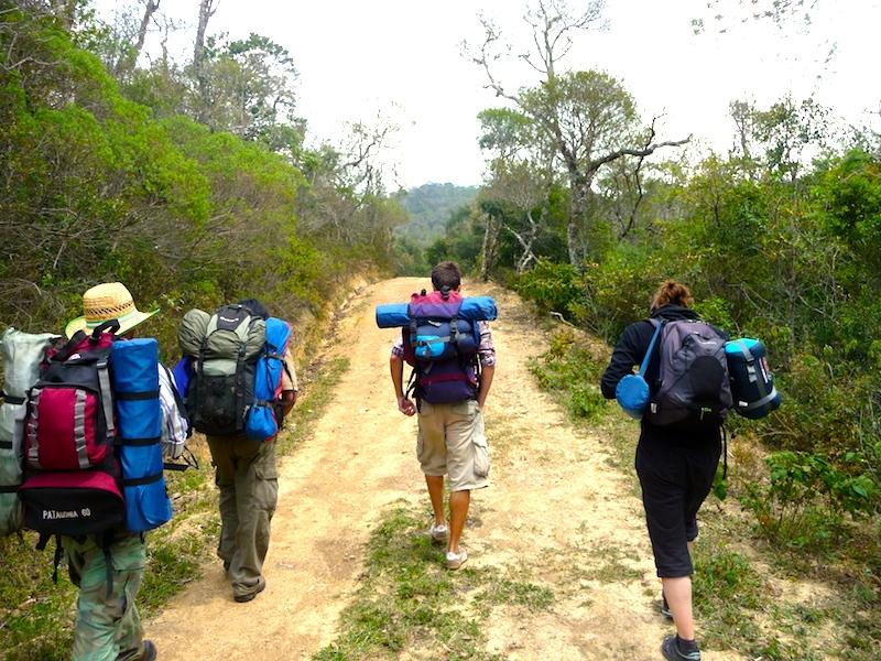 Devriez-vous prendre un sac à dos ou un sac à main lors de votre prochain voyage?
