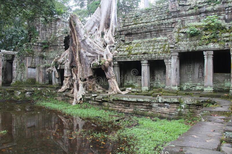 Preah Khan (littéralement «l'épée sacrée» en khmer) était plus qu'un temple, le complexe servait aussi de ville et d'université bouddhiste.