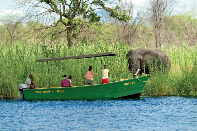safari africain en bateau