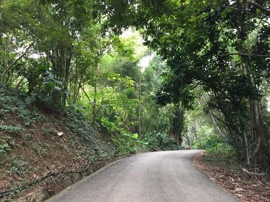 La route vers les chutes de Kuang Si