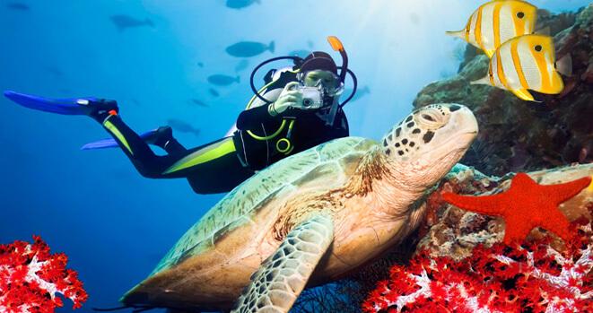 Koh Lanta est l'un des endroits les plus populaires pour la plongée en apnée en Thaïlande