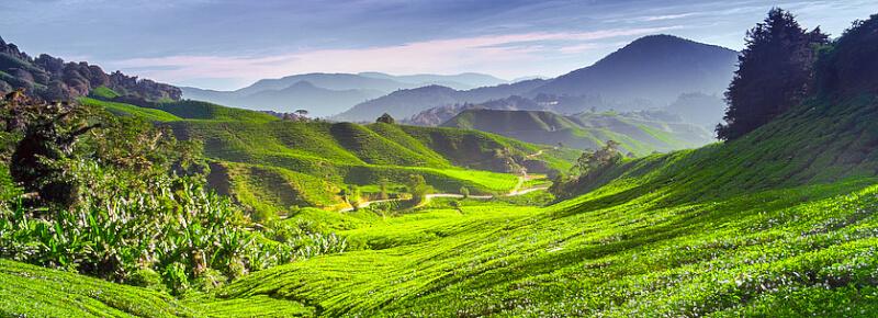 Comment Aller de Nha Trang à Da Lat