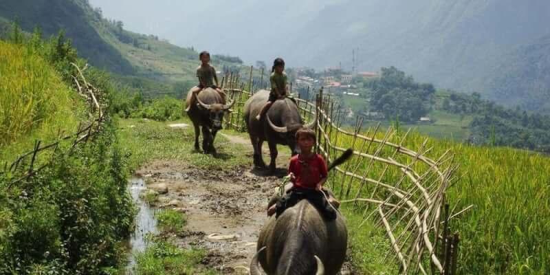 Vie quotidienne au village Lao Chai