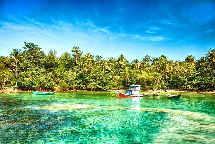 Cocotiers de Nam Du