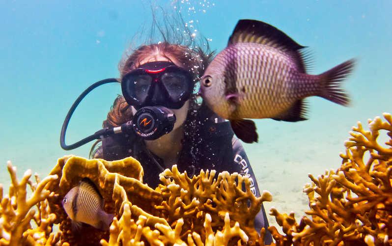 Phuket: sites de plongées les plus populaires
