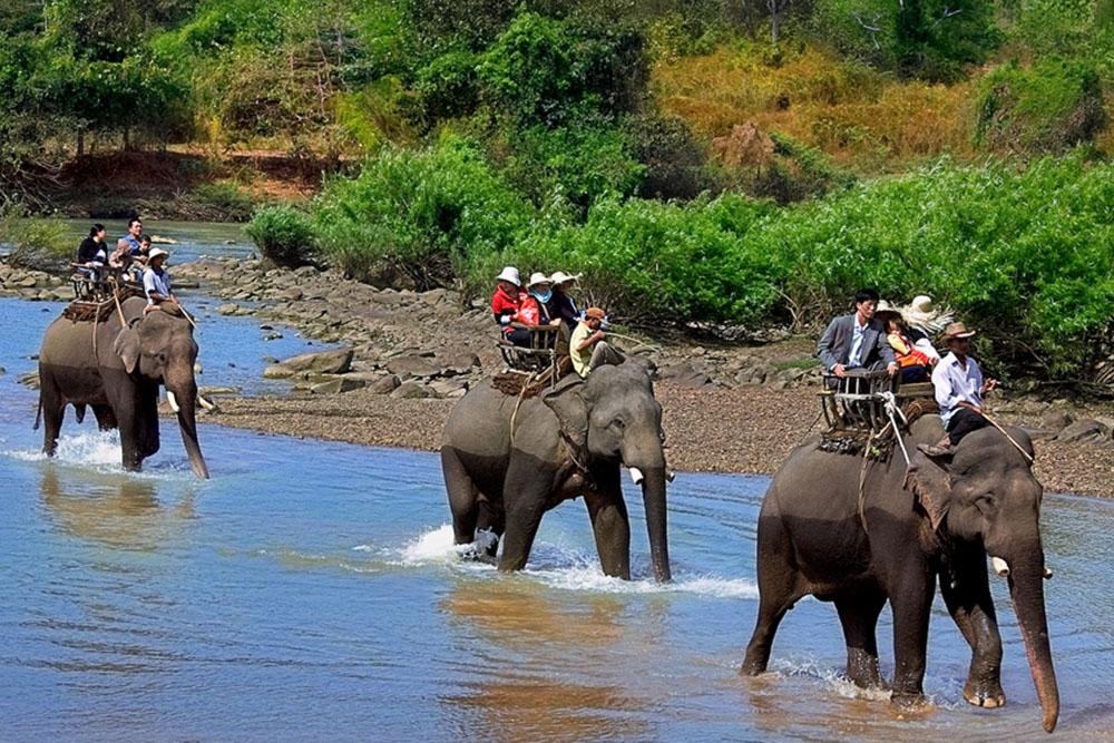 Hauts plateaux du Vietnam centrale – Un guide complet sur les attractions pricipales de Dak Lak