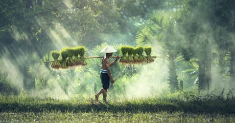 Myanmar Budget Voyage
