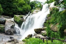 3 raisons pour lesquelles vous devriez visiter Chiang Mai pendant la saison des pluies