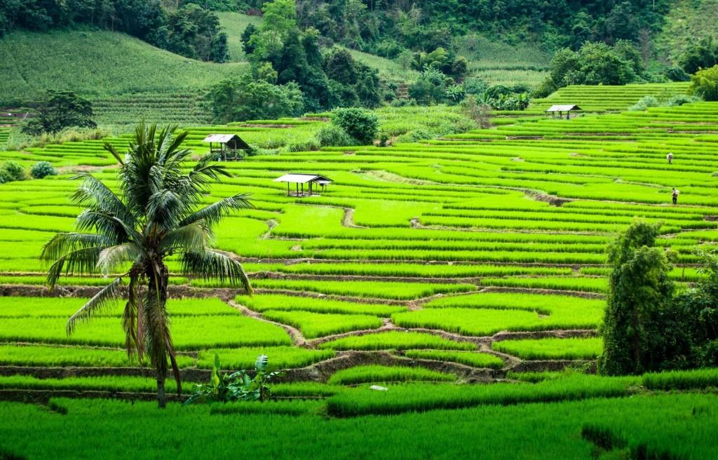 Chiang Mai en saison de pluies