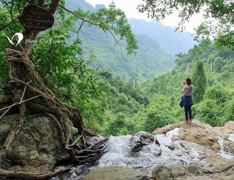Jardin botanique du parc national Phong Nha Ke Bang