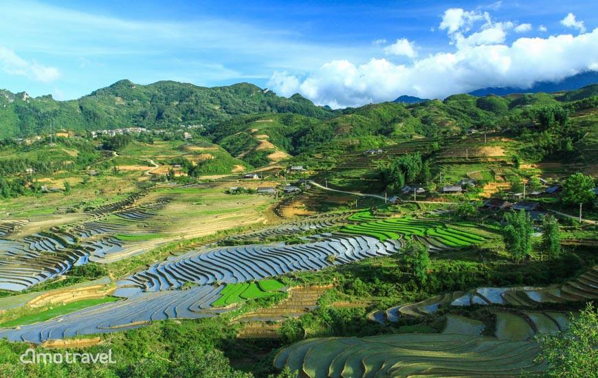 Les rizières en terrasses de Sapa