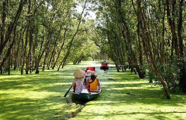 Foret de cajeputiers de Tra Su et le pont en bambou le plus long du Vietnam