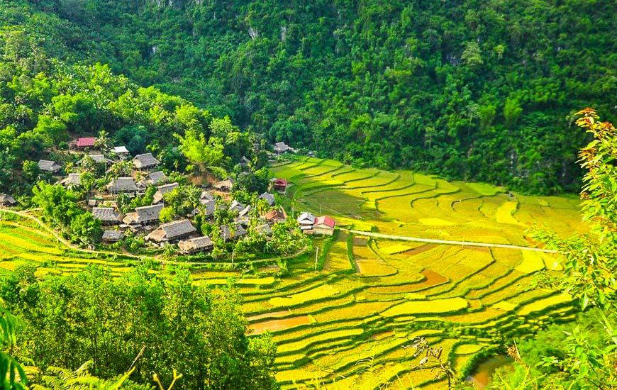 Trekking au parc national Pu Luong