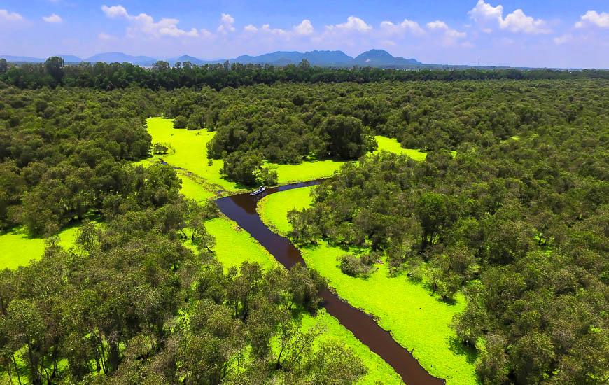 Foret mangrove de Tra Su vue de flycam